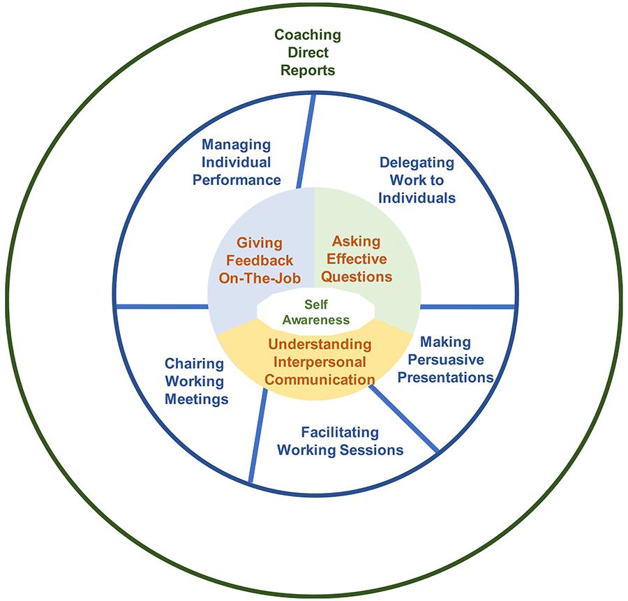e Managerial Skill Framework